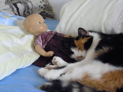 Minka harmonisch mit meiner Puppe...